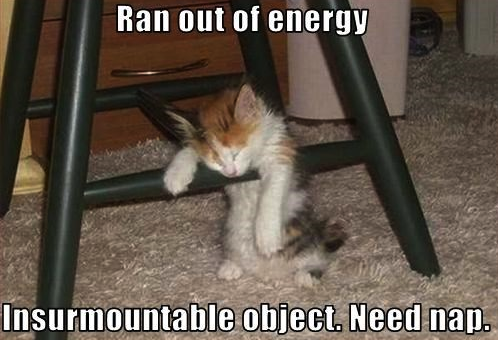 Running-out-of-energy-cat-7-Health.png