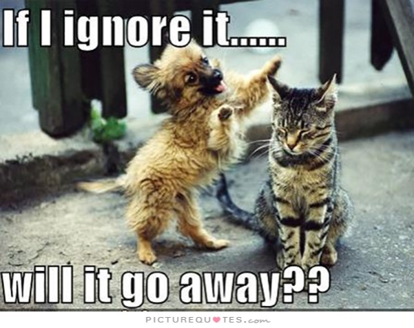 if-i-ignore-it-will-it-go-away-quote-1